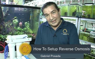 Installing Reverse Osmosis