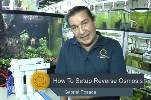 reverse-osmosis-ro unit wattley-discus